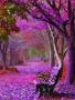 Puple Bench Tree wallpapers