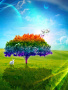 Color Tree wallpapers