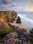 Beach Rock wallpapers