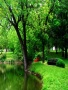 Green Park wallpapers