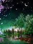 Beautiful Night wallpapers
