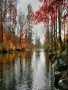 Piney River wallpapers