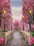 Pink Park wallpapers