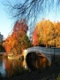 Autumn Bridge wallpapers