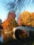 Autumn Bridge wallpapers