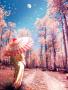 Pink Springs wallpapers