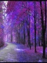 Purple Tree wallpapers