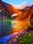 Color Of Lake wallpapers
