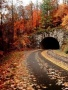 Awesome Autumn wallpapers