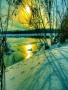Winter Sun wallpapers