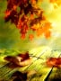Autumn Leafs wallpapers