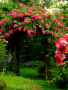 Garden Gate wallpapers