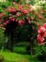 Garden Gate wallpapers