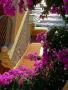 Purple Steps wallpapers