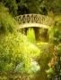 Nature Bridge wallpapers