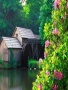 Water Mill wallpapers