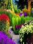 Colorful Garden wallpapers