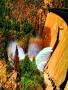 Rainbow Nature wallpapers