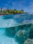 Underwater View wallpapers