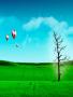 Green Field Balloon wallpapers