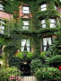 Green Garden Building wallpapers