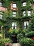 Green Garden Building wallpapers