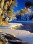 Winter View Nature wallpapers