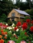 Home Sweet Home wallpapers