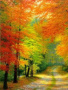 Autumn Colors Road wallpapers