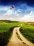Balloons Path Way wallpapers