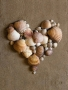 Shells Heart wallpapers