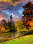 Autumn Colors wallpapers