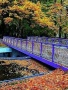 Autumn Blue Bridge wallpapers