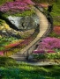 Garden Steps wallpapers