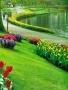 Beauty Garden Way wallpapers