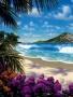 Caribean Sea wallpapers