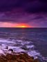 Purple Sunset wallpapers