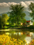 House In Nature wallpapers