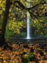 Nice Water Fall wallpapers