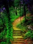 Beautiful Stairs Way wallpapers