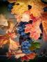 Harvest Autumn wallpapers