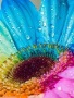 Colorful Flower On Drop wallpapers