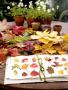 Autumn Leaves On Garden wallpapers