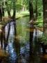 Garden River wallpapers