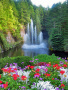 Waterfalls And Flowers wallpapers