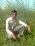 SEO Expert Majid wallpapers