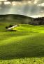 Grass Land wallpapers