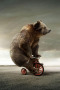 Circus Bear On Tricycle IPhone Wallpaper wallpapers