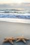 Sea Beach Starfish IPhone Wallpaper wallpapers