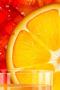 Orange Slice Nature IPhone Wallpaper wallpapers